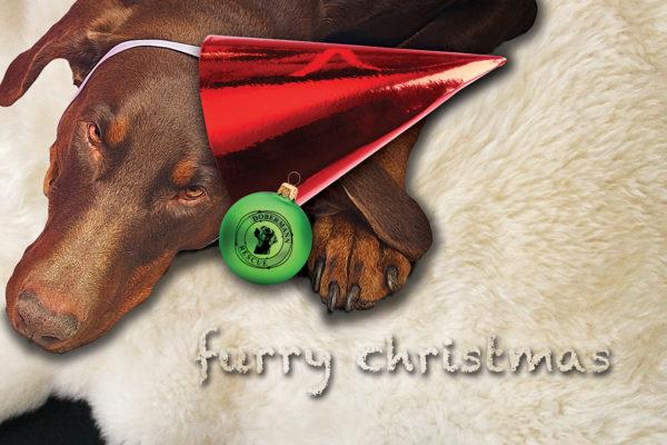 Dobermann in Christmas Hat Card