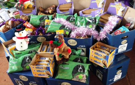 Our 2017 CHRISTMAS TREAT FUND is now open! It gives us great enjoyment on your behalf to be able to buy extra treats for the dogs in kennels over the Christmas period and your contribution however small ads up.