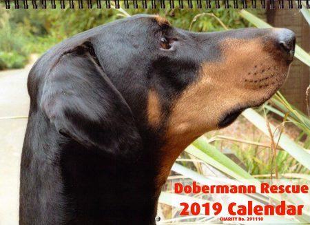 2019 Dobe Calendar