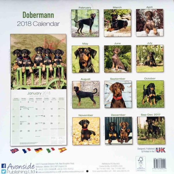 Dobermann Calendar 2018 - Back