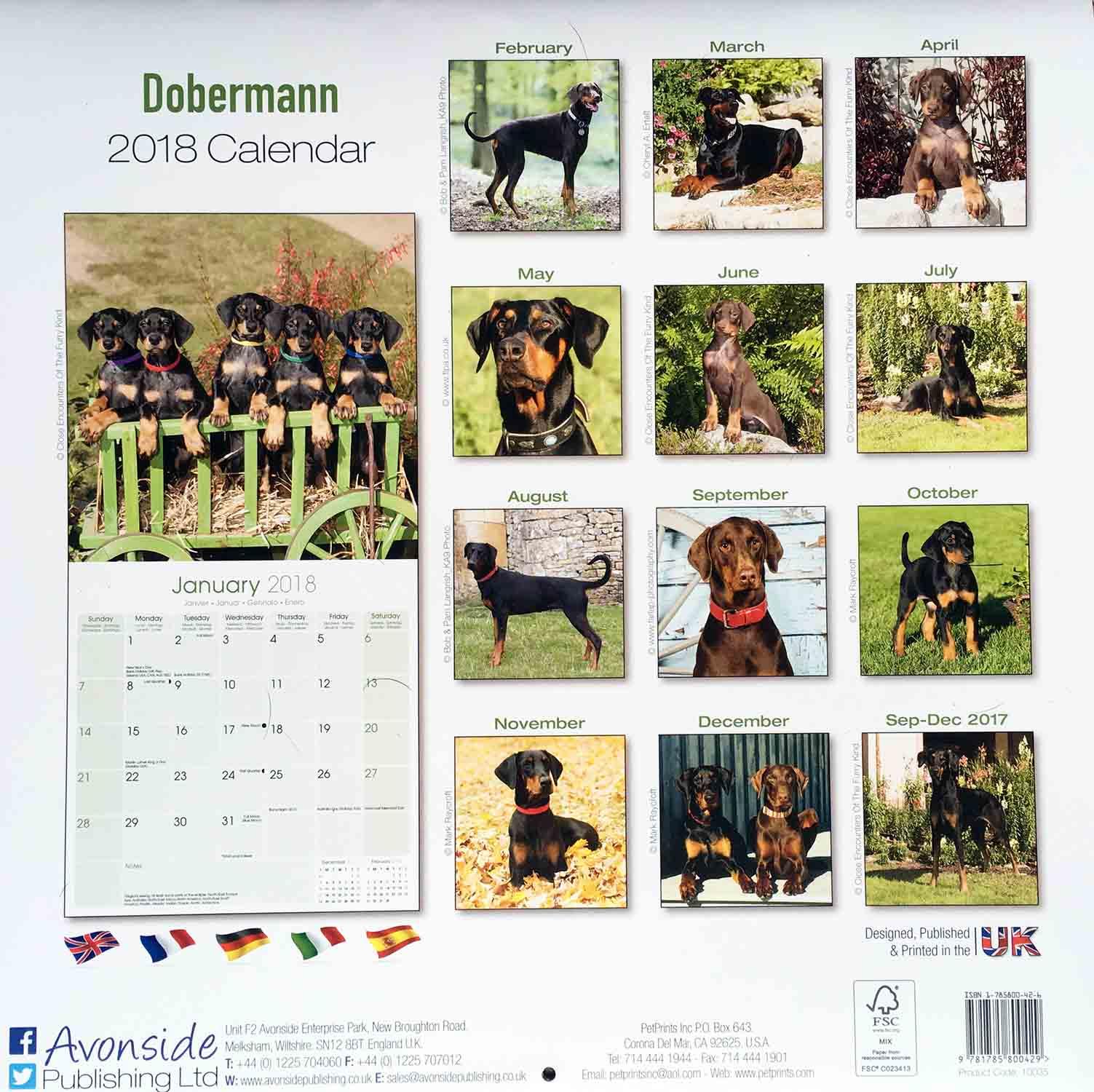 Dobermann Calendar 2018 - Back