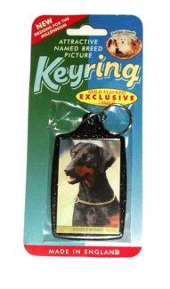 Large Keyring