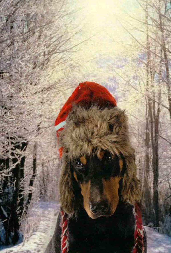 Design B - Chilly Winter Walk