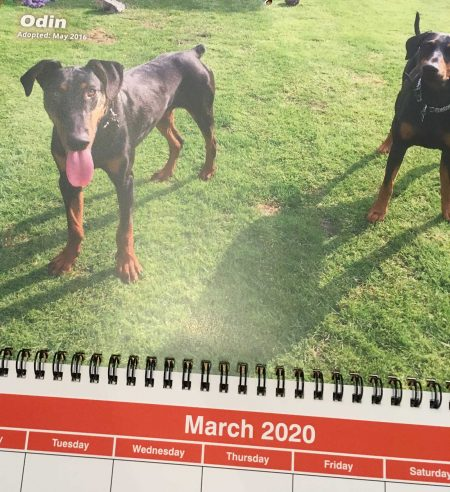 2020 Calendar 3